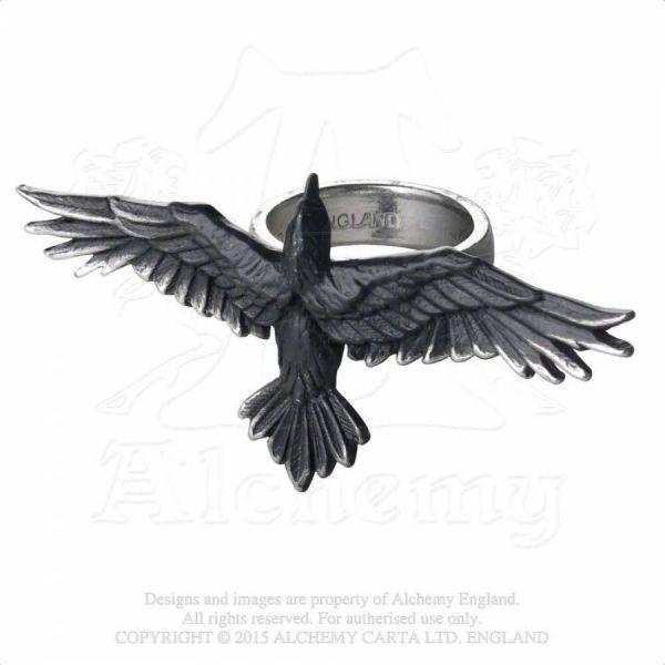 Schwarze Krähe Ring - Black Consort